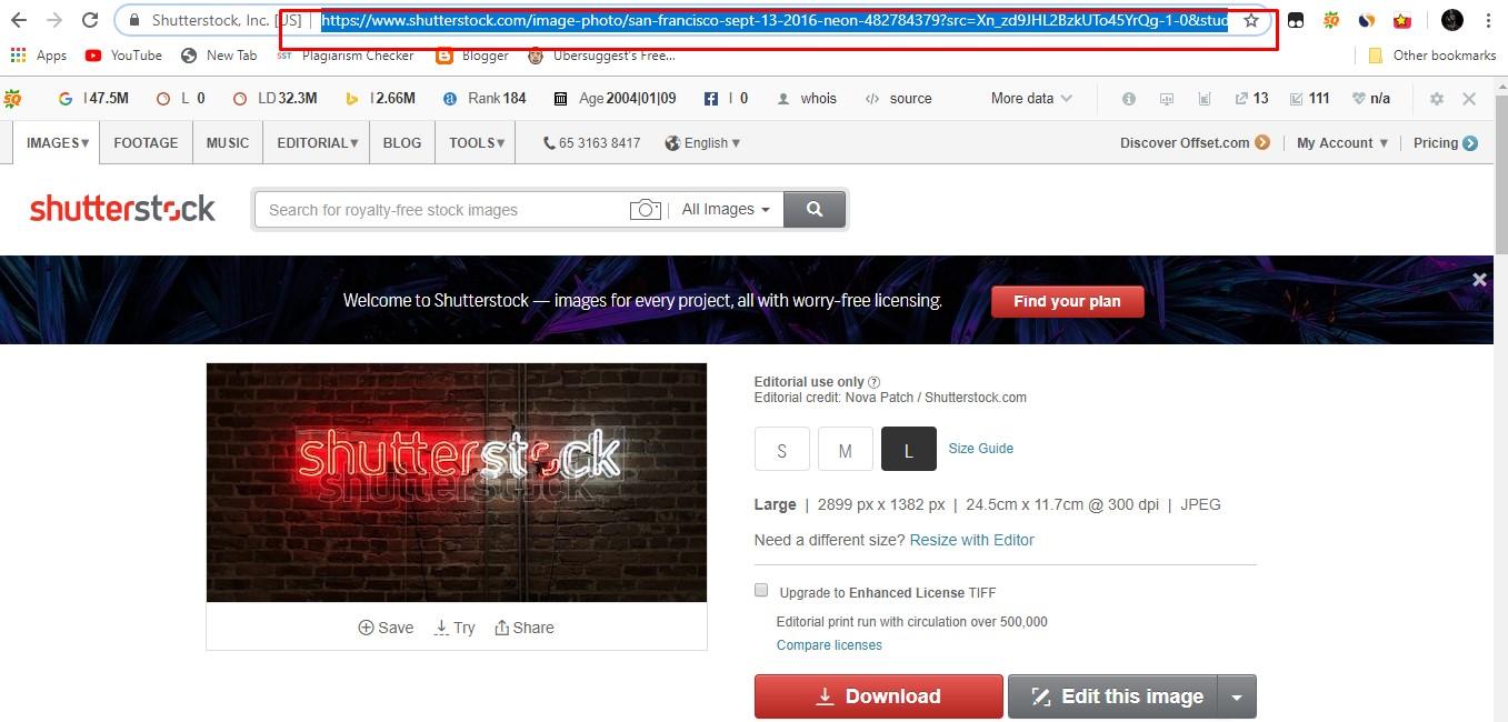 Cara Download Vector Di Shutterstock Gratis Peatix