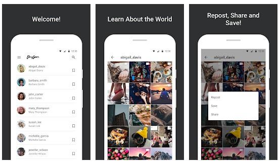 Cara Download Story Instagram Orang Lain Menggunakan Aplikasi