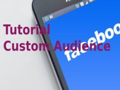 Tutorial Custom Audience
